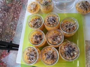Verrines de legumes sans gluten Naturopathe Uriage