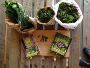 Cours de cuisine plantes sauvages naturopathe