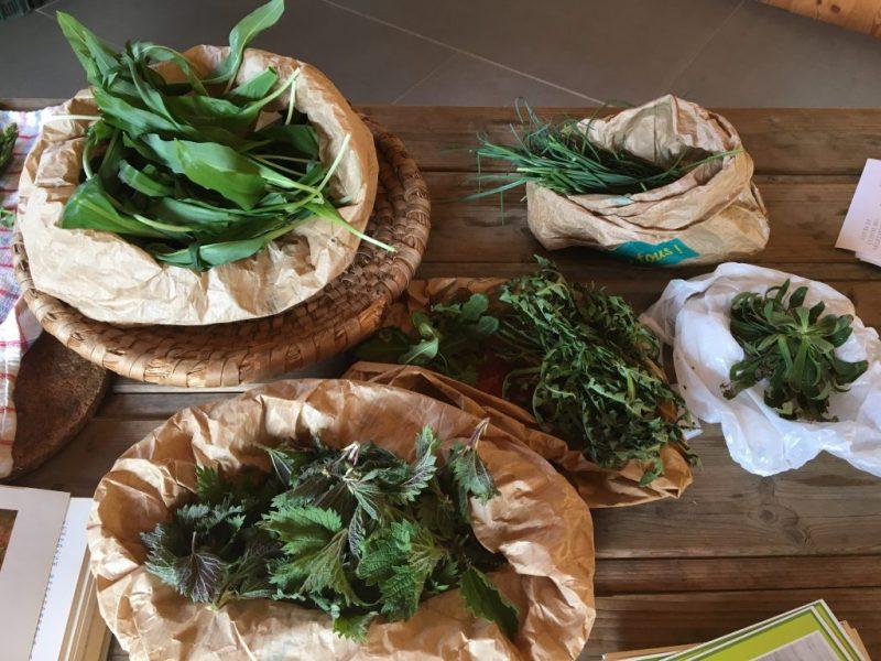 Plantes sauvages cueillette et cuisine avec Isabelle Schillig Grenoble Uriage