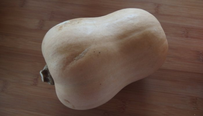 Courge Butternut naturopathe Uriage